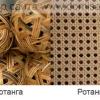 Что такое натуральный и искусственный ротанг и ротанговое полотно?