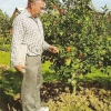 Гавриленко владимир васильевич, садовод-испытатель из подмосковья, садовая коллекция