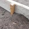 Изготовление бетонной дорожки в саду своими руками