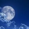 Как лунный месяц влияет на растения, посадка на луну.