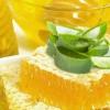 Как можно приготовить лекарство из алоэ и меда?
