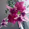 Подарили хризантемы, можно ли из черенков вырастить и как?