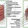 Как сделать компост? Состав и применение