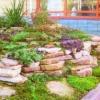 Каменистые сады - способ организации садового дизайна