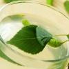Квас из березового сока: два простых рецепта