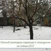 Лунный календарь садовода-огородника на январь 2017 года