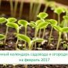 Лунный посевной календарь садовода-огородника на февраль 2017