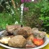 Мини-водоем для сада своими руками за полчаса: мастер-класс
