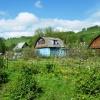 Огород в июне, агротехнические мероприятия, посадка растений, борьба с сорняками