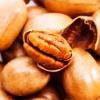 Орех пекан, культура, полезные свойства