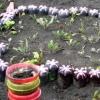 Оригинальные садовые украшения для экономных