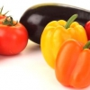 Подготовка и сроки посева рассады перцев, баклажан, помидор в 2016 году