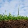 Подготовка почвы к весне
