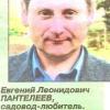 Сибирская стланцевая формировка плодовых культур в суровых климатических зонах