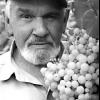 Синицын александр семёнович, садовод-опытник из челябинска, первый в челябинске