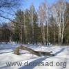 Уборка и вывоз снега с территории загородного дома или дачи.