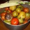 Ускорение созревания томатов